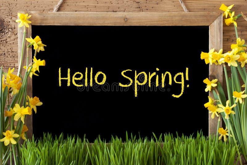 Narcissus цветка, доска, весна текста здравствуйте! стоковые фото