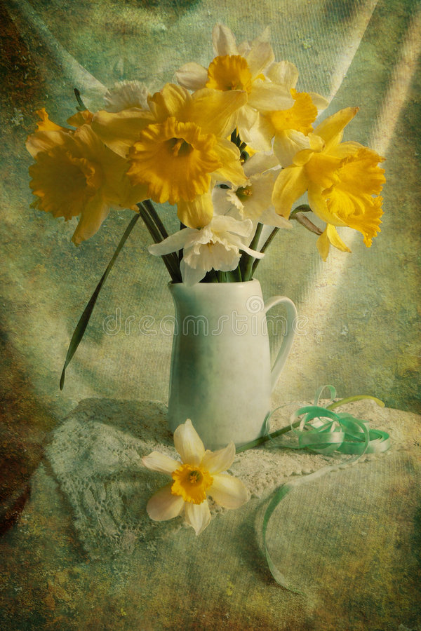 Narcissus. Yellow narcissus on the desk stock photo