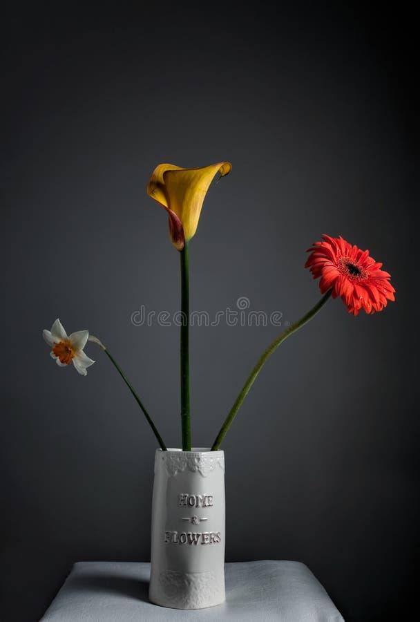 Narcissus, Cala, Gerbera стоковое изображение
