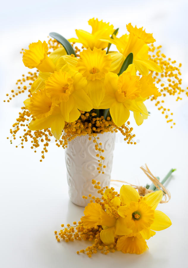 Narcissus and mimosa. Bouquet of yellow narcissus and mimosa royalty free stock images
