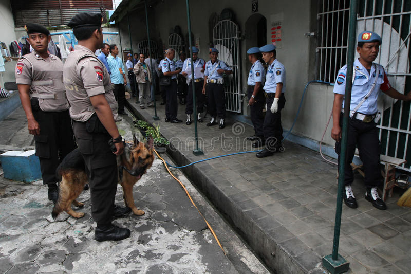 Narcotics raids