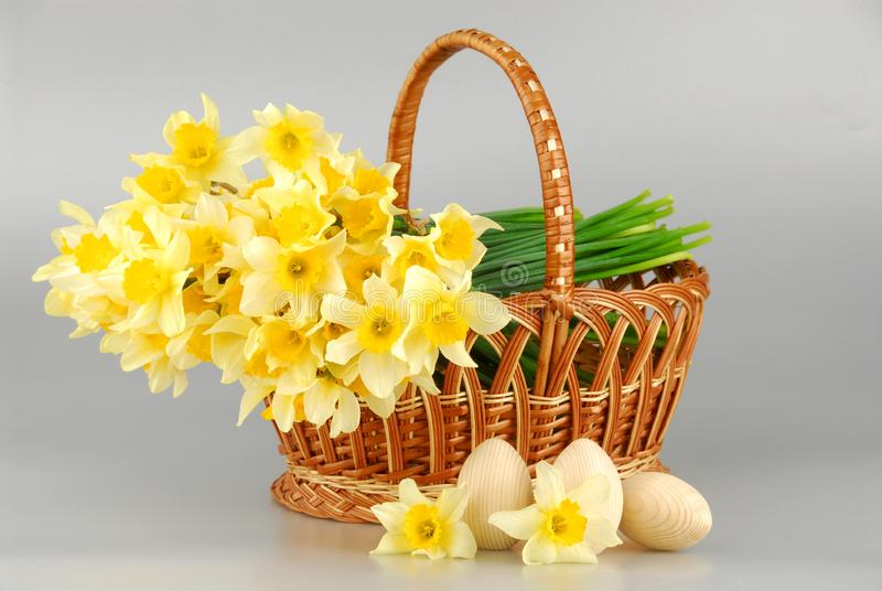 Narcyza kosz, Easter jajka w koszu, wiosna narcyza kwiatu żółte kobiety lub matka dzień, fotografia royalty free