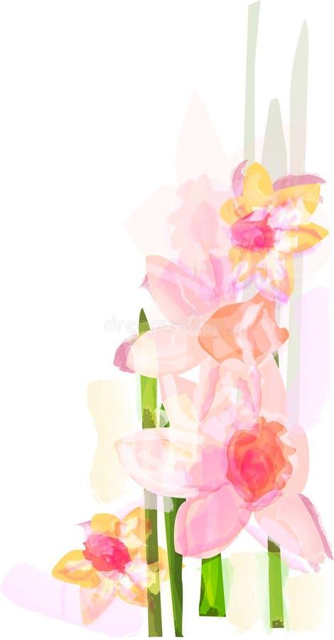 Narcyza kwiat obraz royalty free