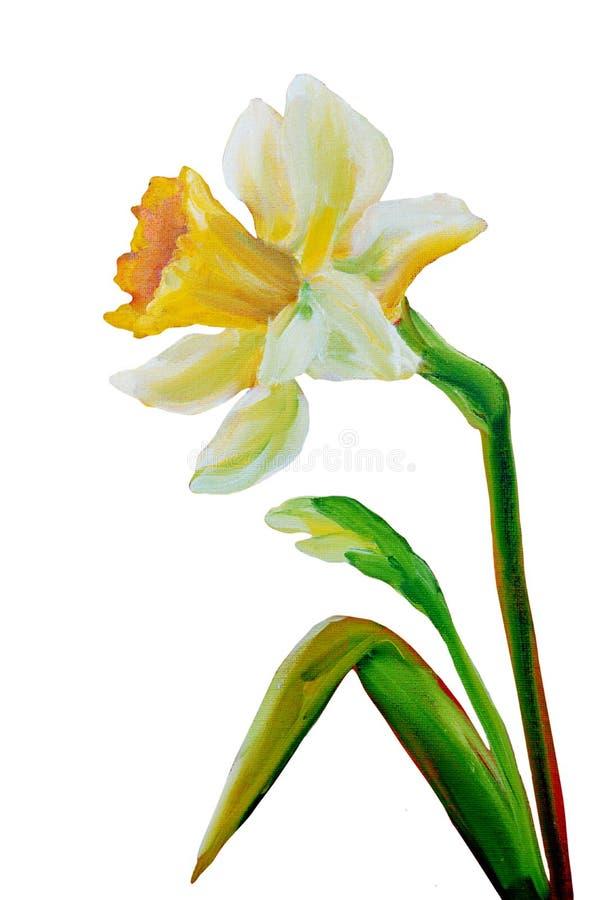 Download Narcyza obraz olejny ilustracji. Ilustracja złożonej z arte - 53785712