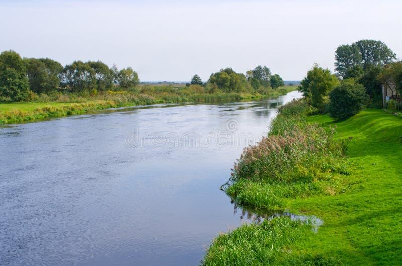 Narewrivier - Polen stock foto