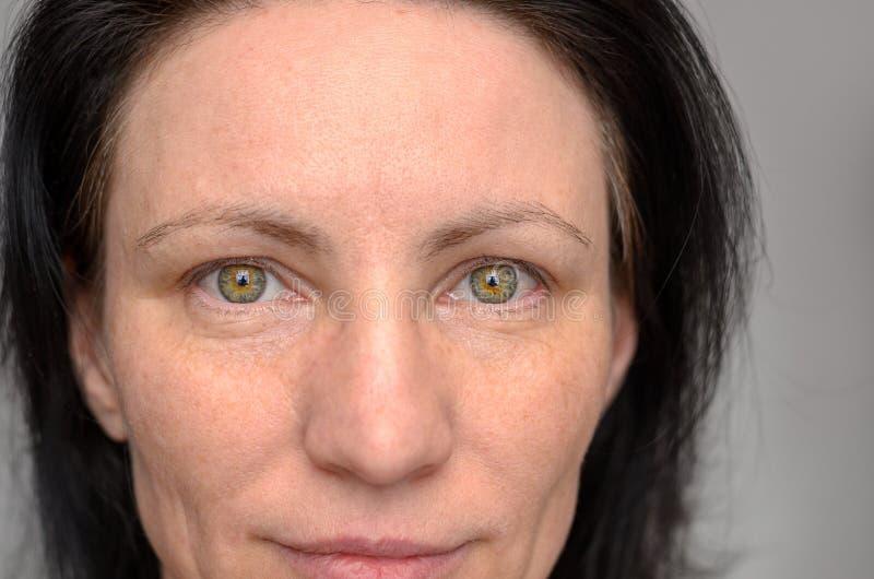 Nariz e olhos de uma mulher de olhos verdes fotografia de stock