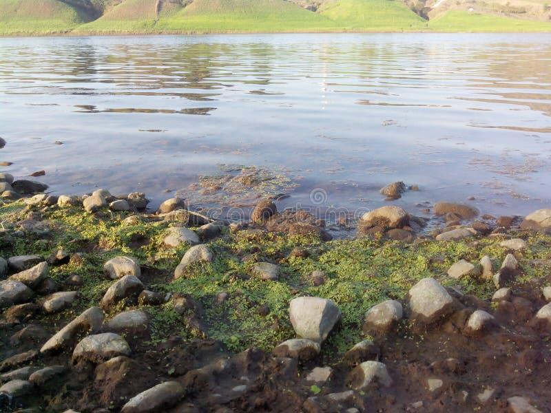 Narmada rzeki ind obrazy stock