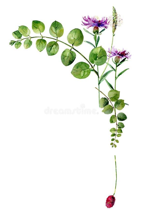 Narożnikowa kwiat rama ilustracji