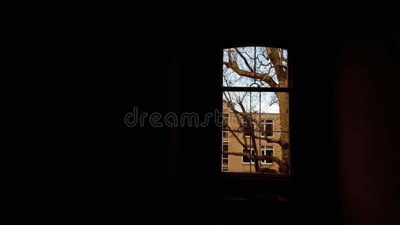 Narożnikowy okno zdjęcia stock