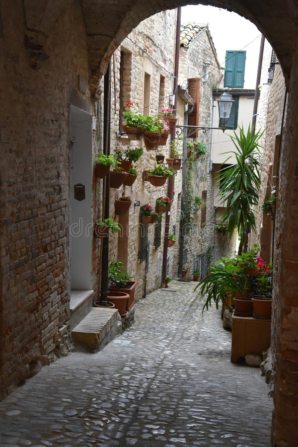 Narrow alley in Torre di Palme. Narrow street with old houses in the old village of Torre di Palme, Comune  di Fermo in Abruzzo, Italy stock photos