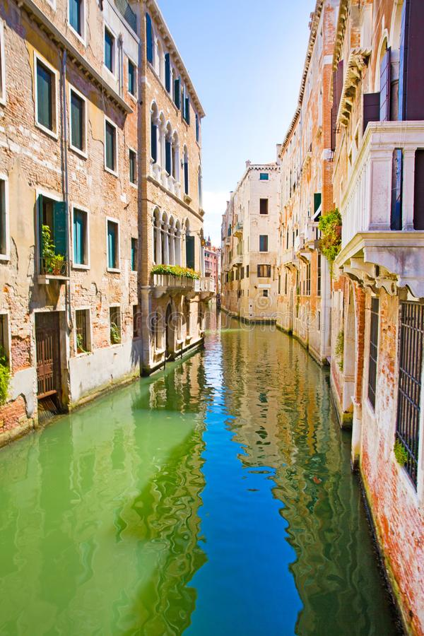 Narrow canal in Venice, Italy. Old historical buildings and bright green water. Vacations in Italy royalty free stock photography