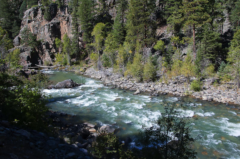 The Narrow Gauge Railway from Durango to Silverton that runs through the Rocky Mountains by the River Animas In Colorado USA. The town was organized in stock photos