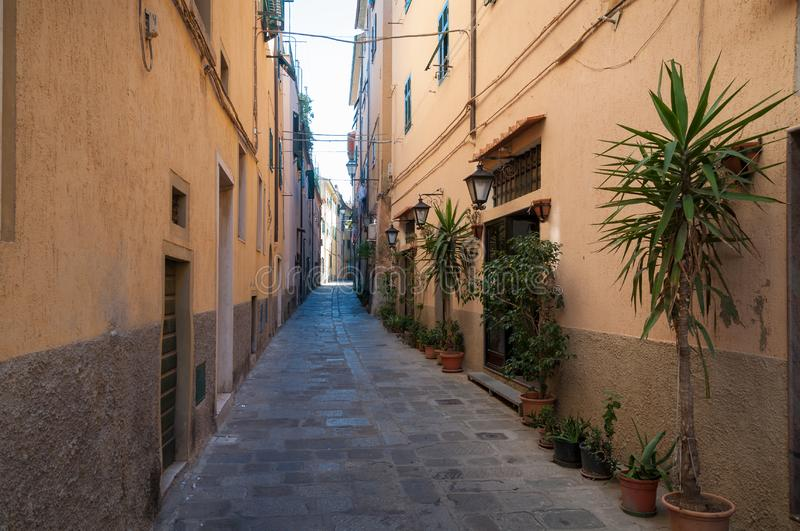 Narrow Italian street with cobble stone path and plants in flowerpots royalty free stock photography