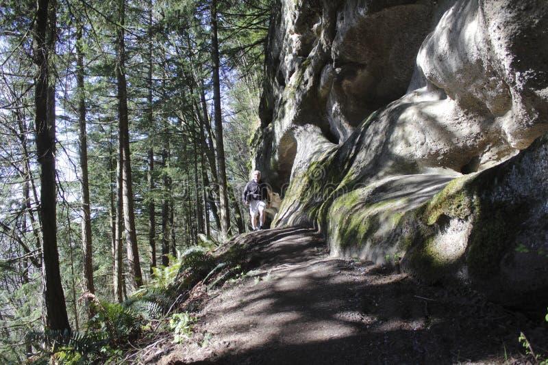 Man Walks on Mountain Trail royalty free stock image
