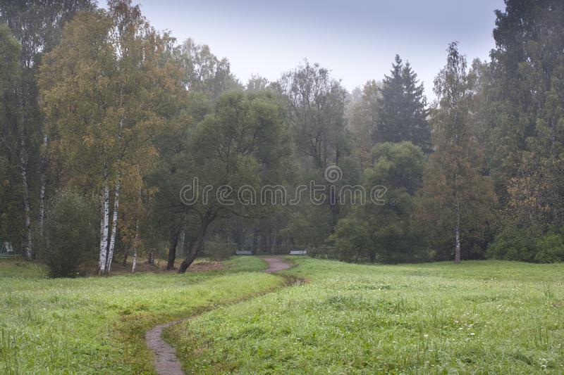 Narrow path on green field stock photos