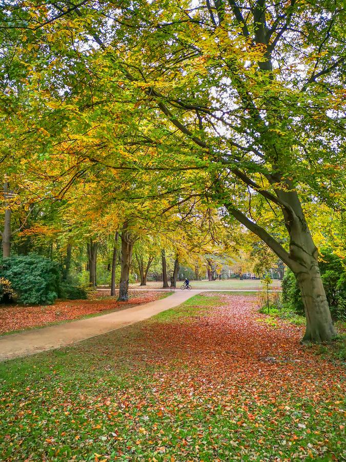 Narrow pathes in golden autumn park in Berlin royalty free stock photography