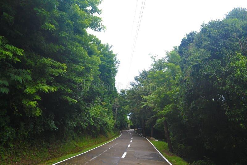 narrow road 免版税库存图片