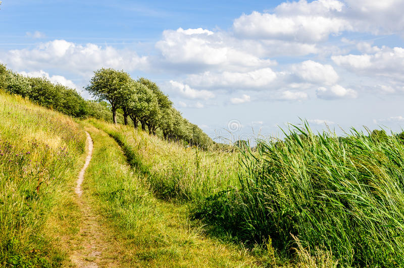 Narrow and sandy footpath up royalty free stock photo