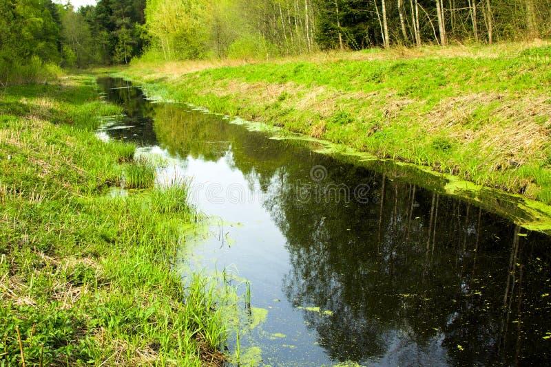 The narrow small river stock photos