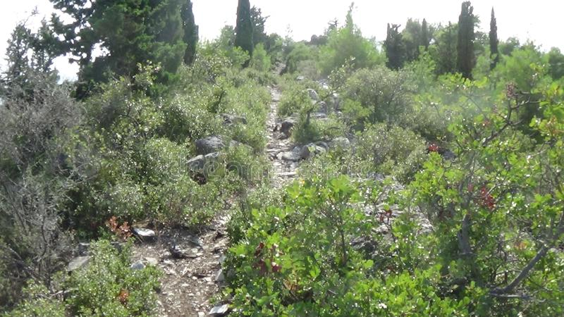 A narrow stone trail for low altitude hiking. Characteristic terrain of the Mediterranean stock images