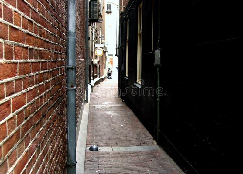 Narrow Street in Amsterdam