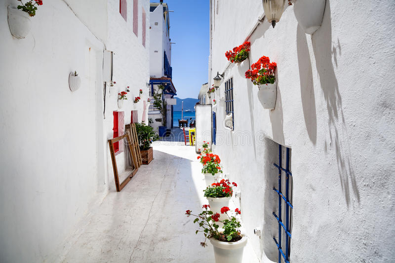 Narrow street in Bodrum. Narrow street with flower pot and Aegean sea in the background, Bodrum, Turkey stock photo