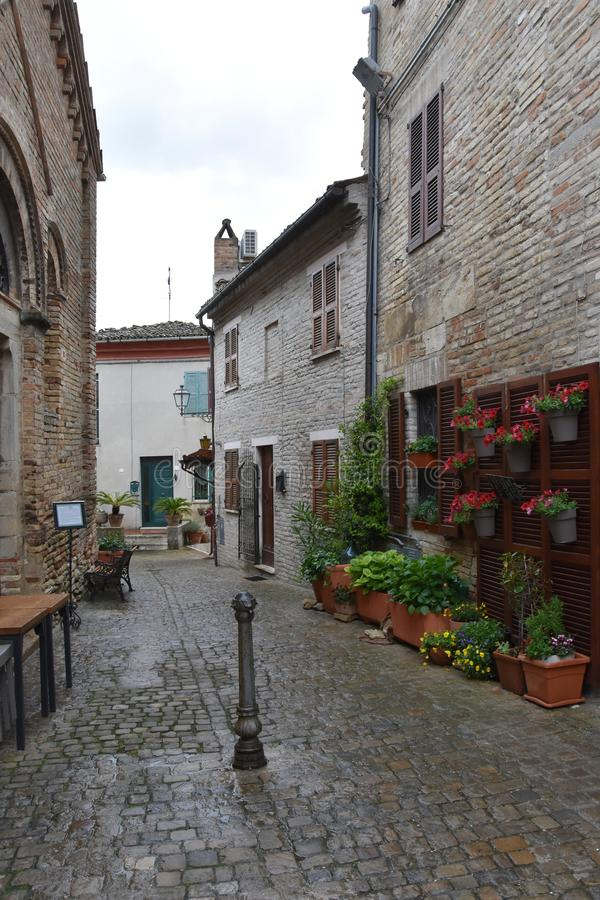 Narrow alley in Torre di Palme. Narrow street with old houses in the old village of Torre di Palme, Comune  di Fermo in Abruzzo, Italy stock image