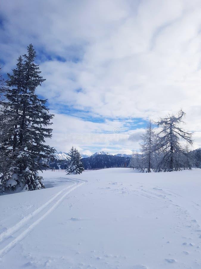 Narty chociaż śnieg obrazy royalty free