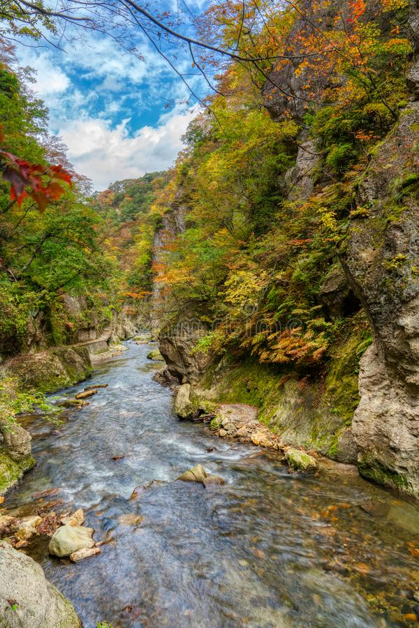 Naruko Gorge Japan royalty free stock photo