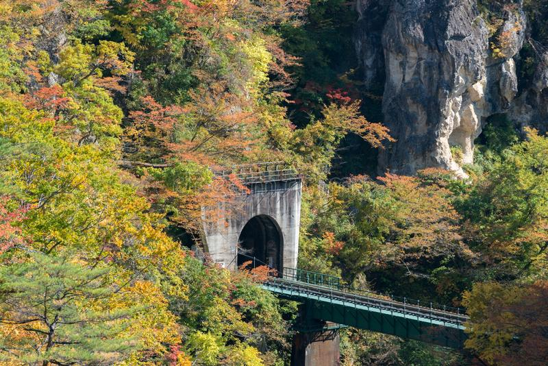 Naruko Gorge Miyagi Tohoku Japan royalty free stock photo