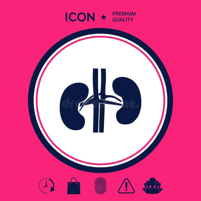 narządów ludzkich Cynaderki ikona royalty ilustracja