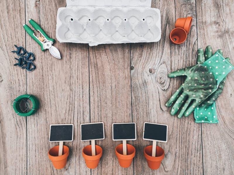 Narzędzia ogrodnicze, takie jak pojemniki z terakotą, rękawice, karton jajeczny i tablice z nazwą pustej tablicy na drewnianym tl fotografia royalty free