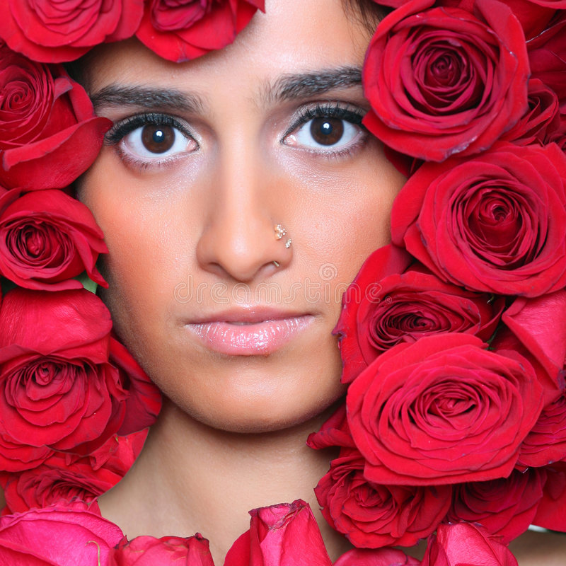 Nas rosas foto de stock royalty free