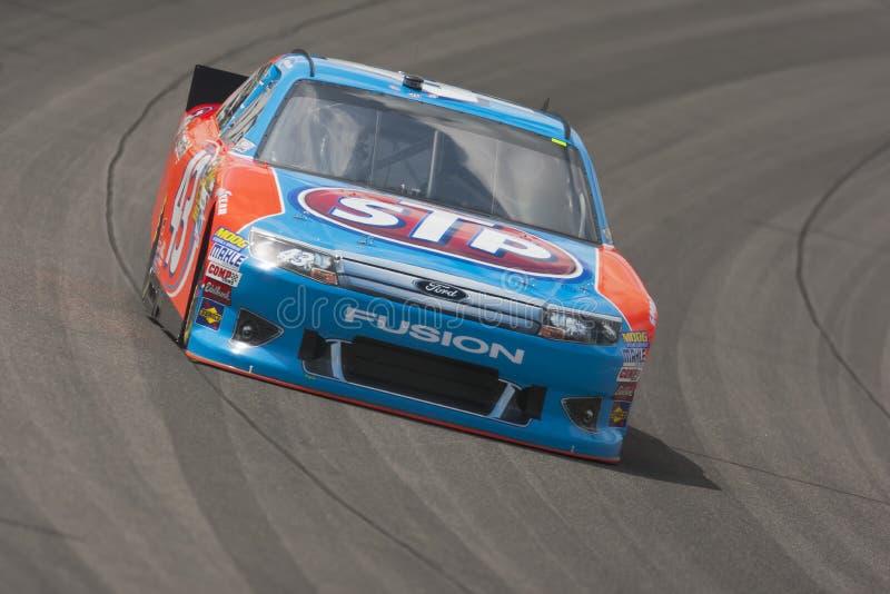 NASCAR 2012: Série STP do copo de Sprint 400 ABRIL 20 imagem de stock royalty free