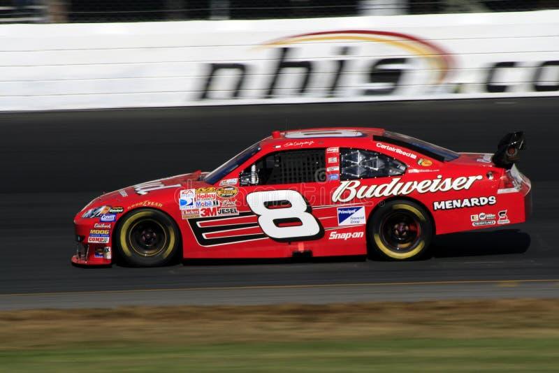 NASCAR - #8 Dale Earnhardt Jr royalty free stock photography