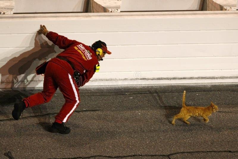 NASCAR Sprint Cup Series Budweiser Shootout stock image