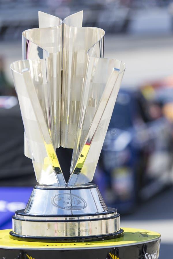 NASCAR 2013: Sprint Cup Series GOODY'S HEADACHE RELIEF SHOT 500 stock photo