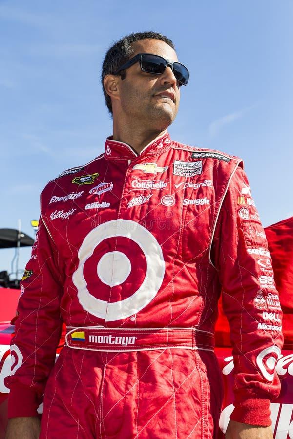 NASCAR 2013:  Sprinta koppserieGODBITENS LÄTTNAD för HUVUDVÄRK SKÖT 500 royaltyfri fotografi
