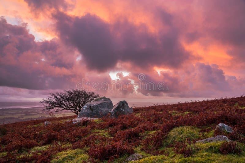 Nascer do sol alaranjado roxo cor-de-rosa no monte de Caradon, Cornualha, Reino Unido imagens de stock
