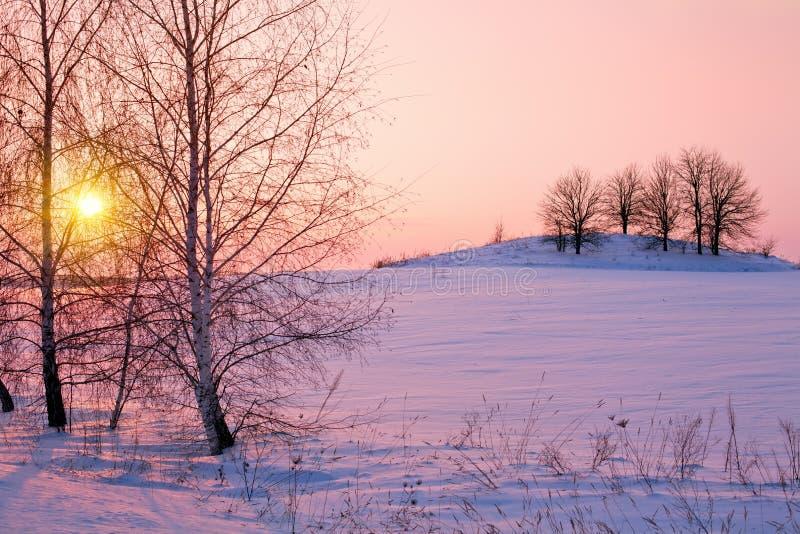Nascer do sol bonito do inverno imagens de stock royalty free