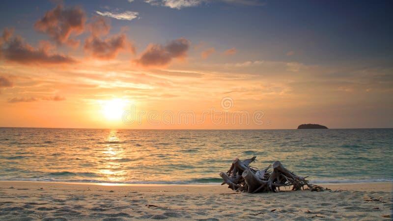 Nascer do sol bonito na praia com o registro de madeira velho imagem de stock