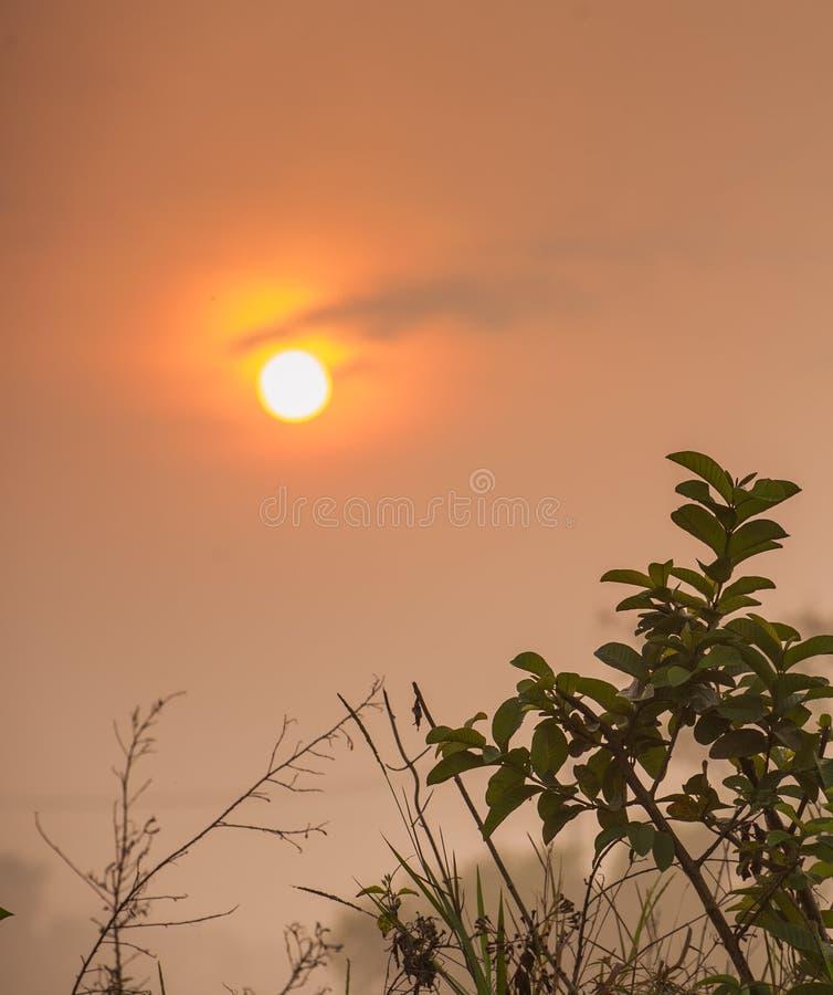 Nascer do sol bonito no inverno imagem de stock royalty free