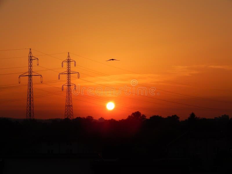 Nascer do sol bonito sobre o campo no verão imagens de stock