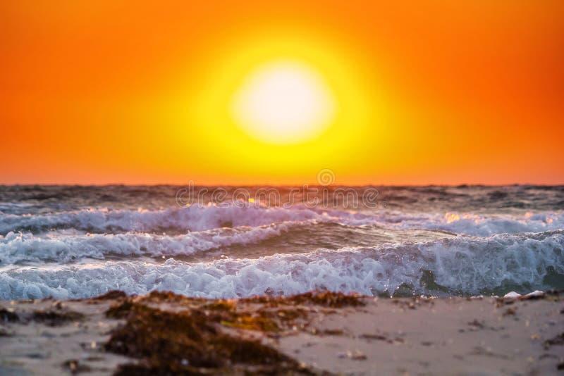 Nascer do sol bonito do verão com acima do mar tormentoso imagem de stock royalty free