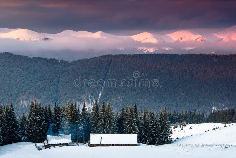 Nascer do sol colorido do inverno nas montanhas Manhã fantástica que incandesce pela luz solar Vista da floresta nevado e da cabi imagens de stock