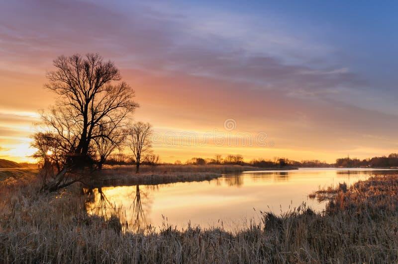 Nascer do sol com as nuvens ardentes amarelas sobre uma lagoa selvagem cercada por árvores na manhã do outono imagens de stock royalty free