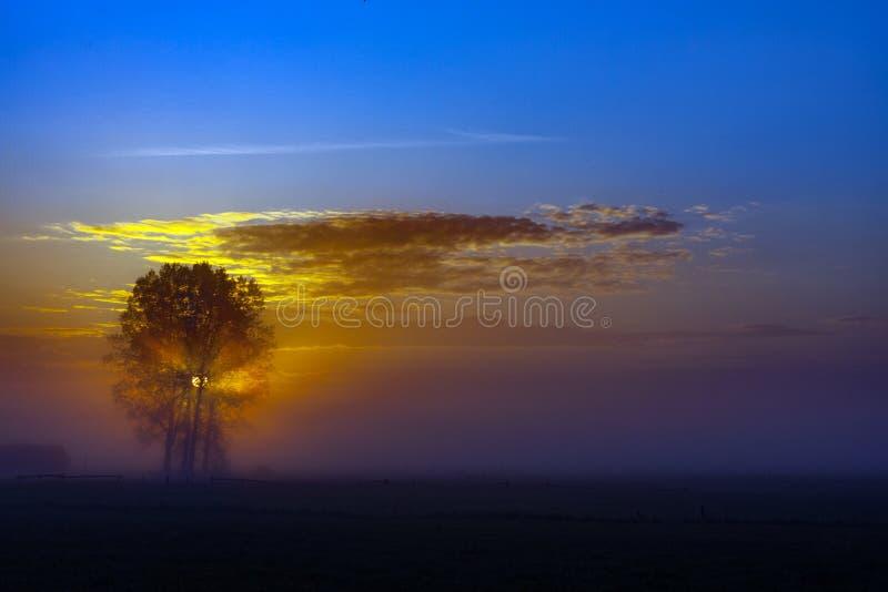 Nascer do sol com nuvens, nascer do sol na manhã imagens de stock royalty free