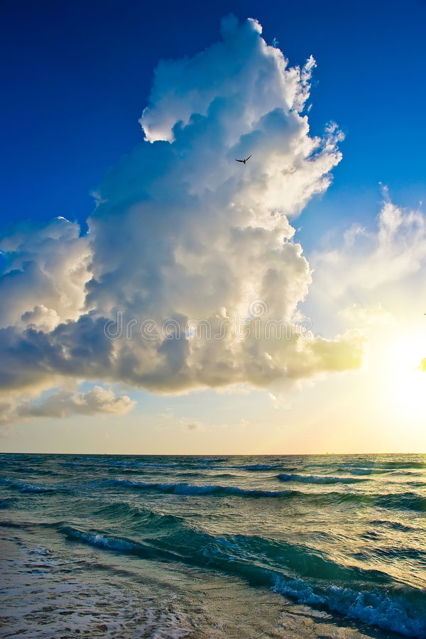 Nascer do sol, costa de Oceano Atlântico, FL fotografia de stock royalty free