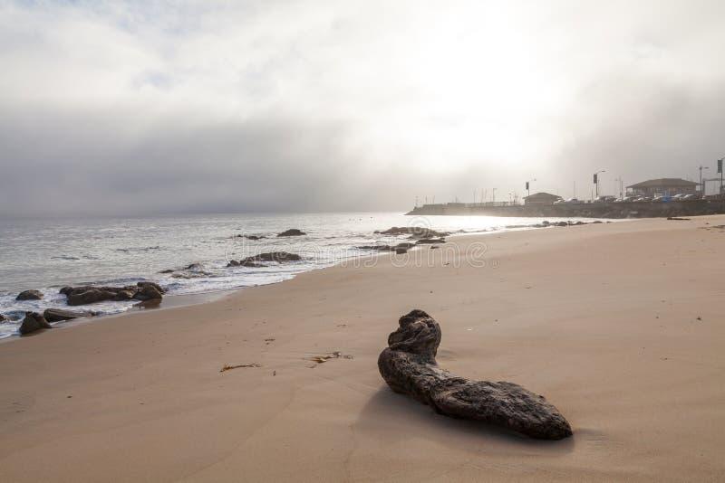 Nascer do sol da baía de Monterey fotografia de stock royalty free