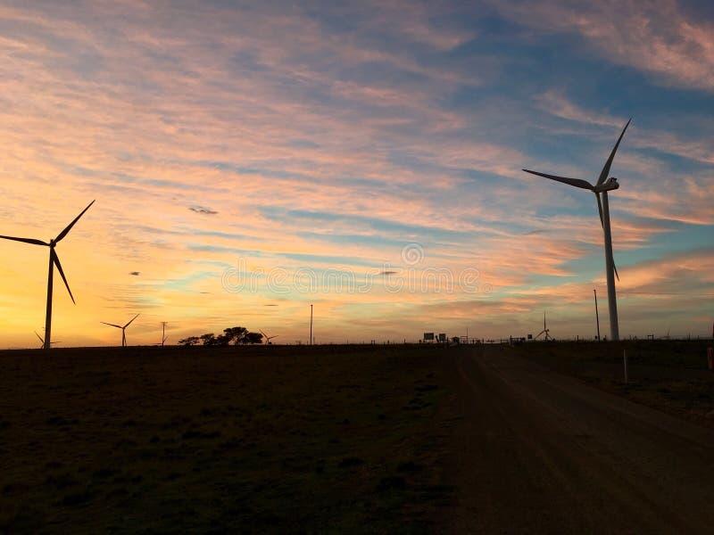 Nascer do sol da manhã das turbinas eólicas fotografia de stock royalty free